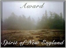 Award Presented by the Spirit of New England Web Ring on 16 June 1999